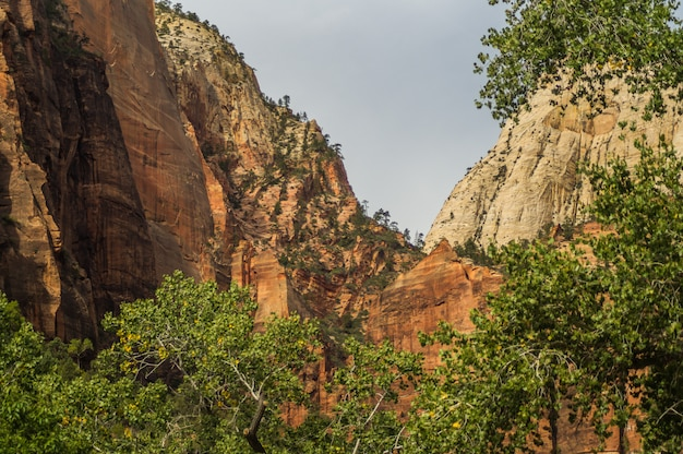 Paesaggio variopinto dal parco nazionale utah di zion