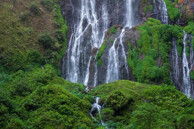 Paesaggio verde naturale della cascata con il flusso dell'acqua