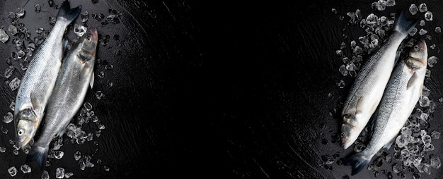Pagina fatta del pesce crudo della spigola sulla vista nera e superiore