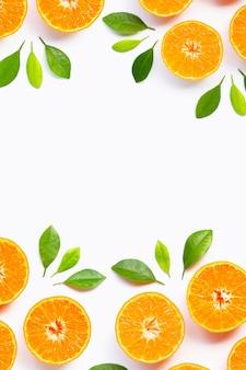 Pagina fatta dell'arancia con le foglie verdi isolate su fondo bianco.