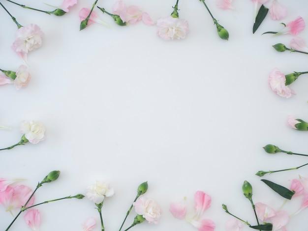 Pagina fatta di garofano su una priorità bassa bianca