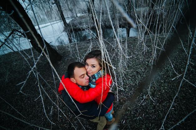 Paio abbracciato visto tra i rami di un albero