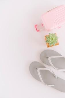 Paio di infradito; pianta succulenta e piccola borsa per bagagli su sfondo bianco