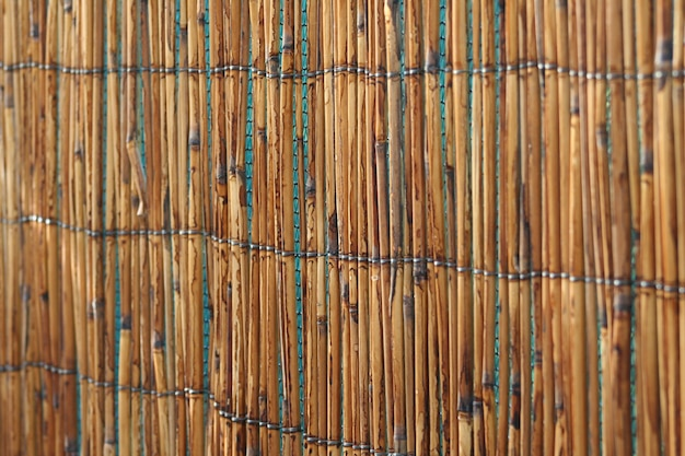 Palizzata di canne di bambù