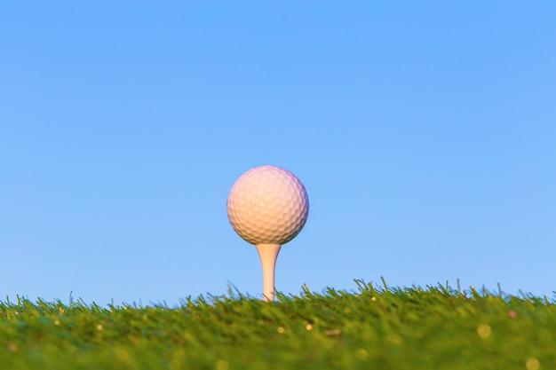 Pallina da golf sull'erba.