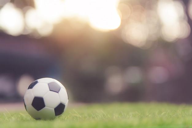 Pallone da calcio sul campo di erba verde con copyspace