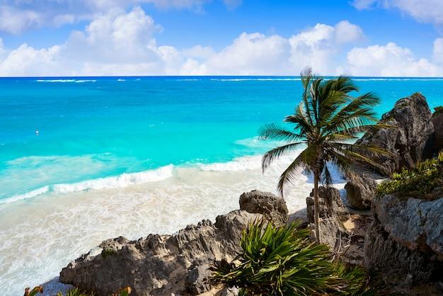 Palma della spiaggia del turchese di tulum in maya del riviera a mayan