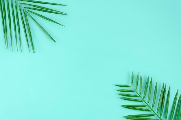 Palma delle foglie tropicali su un fondo blu con spazio per testo