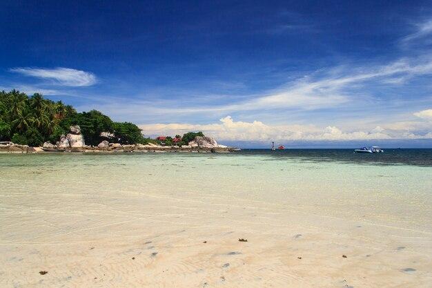 Palma sopra la laguna con le barche e la spiaggia di sabbia bianca al giorno del sole. isola di koh tao, tailandia