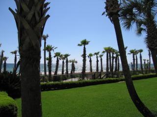 Palme e di fronte all'oceano, vacanze