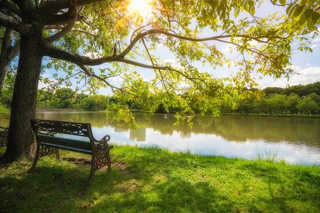 Panchina solitaria nella luce del mattino, panchina del parco nella luce del mattino.