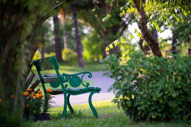 Panchina sotto l'albero nel parco pubblico