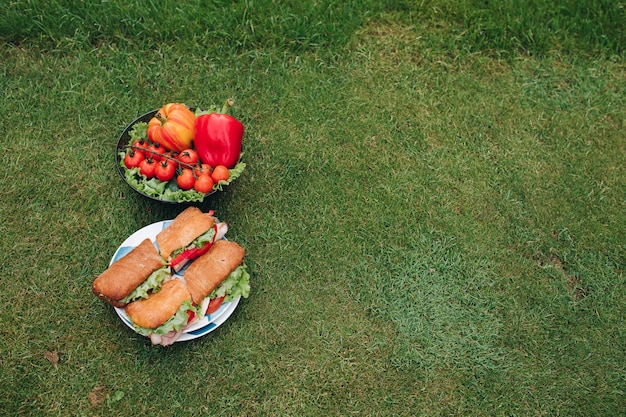 Panini e verdure sull'erba. vista dall'alto di due piatti di bella verdura fresca eco