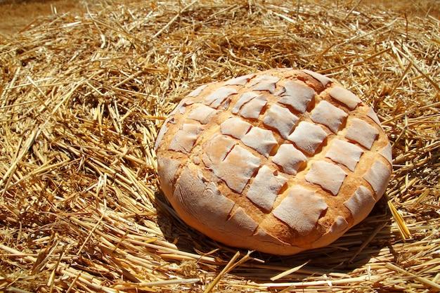 Panino di pane rotondo su paglia di grano dorato