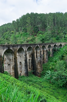 Panorama del ponte ad arco nove, situato nella giungla profonda di demodara, in tempo nuvoloso, ella, sri lanka