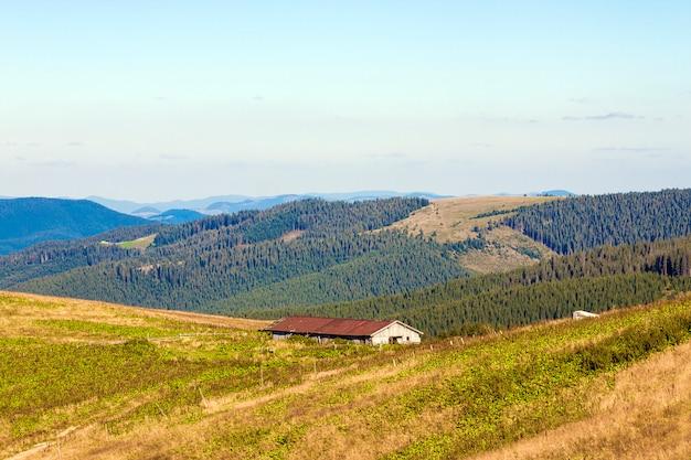 Panorama delle montagne carpatiche nel giorno soleggiato di estate e azienda agricola sul pascolo verde