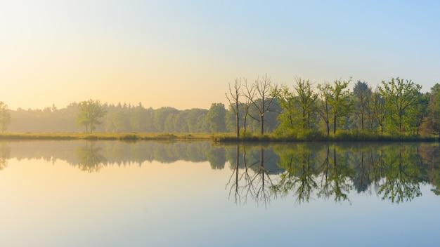 Panoramica di acqua che riflette gli alberi a foglia verde sulla riva sotto un cielo blu