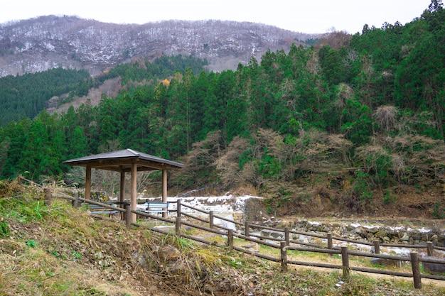 Parco delle scimmie jigokudani. esperienza unica con la sorgente termale naturale