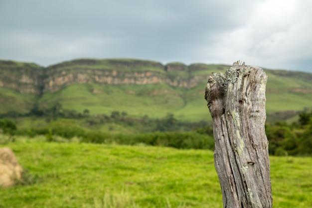 Parco nazionale brasile serra da canastra