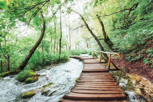 Parco nazionale dei laghi di plitvice, itinerario turistico sul pavimento di legno lungo la cascata