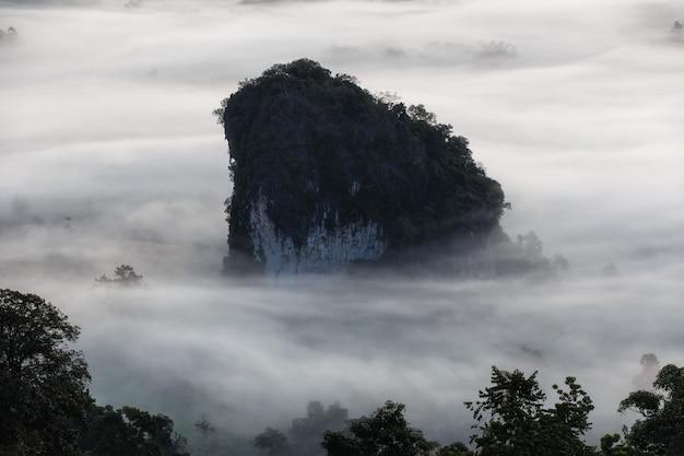 Parco nazionale di phu langka nella provincia di phayao