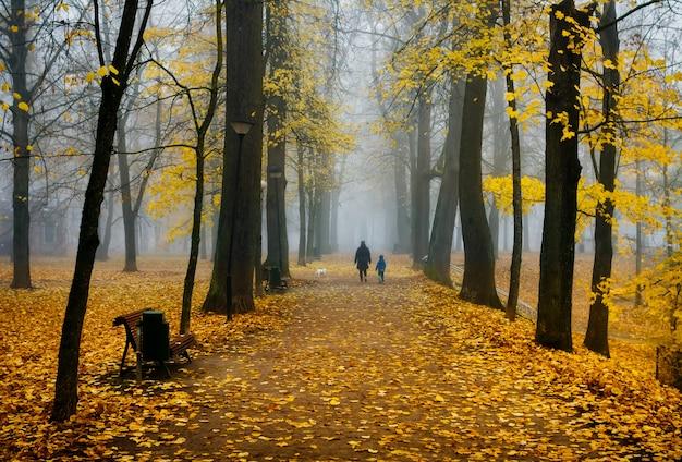 Parco nebbioso