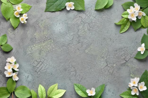 Parete floreale estiva con fiori freschi di philadelphus, noto anche come finto arancio. piatto giaceva sul muro scuro con texture con lo spazio del testo.