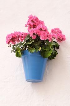 Parete imbiancata tradizionale del vaso di fiore del villaggio di andalusia spagna
