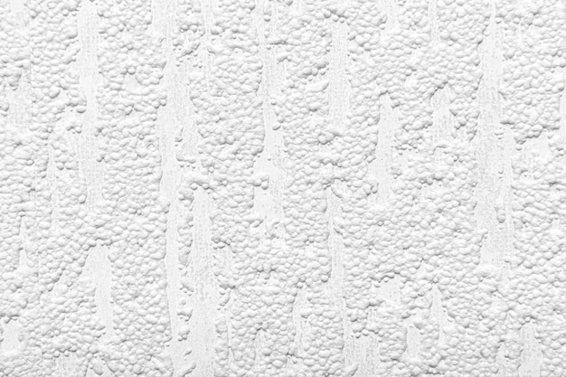 Parete strutturata bianca come sfondo.