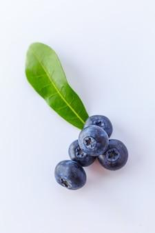Parola fresca yummy naturale naturale