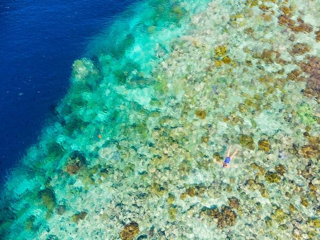 Parte superiore aerea giù la gente che si immerge sul mare caraibico tropicale della barriera corallina