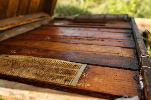 Parte superiore dell'alveare di legno chiuso. raccogli il miele. concetto di apicoltura.