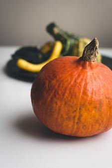 Particolare della zucca arancione autunnale
