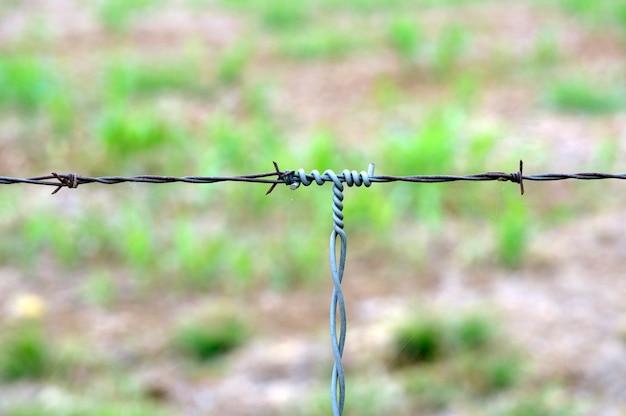 Particolare delle scanalature del filo spinato, installate in fattoria