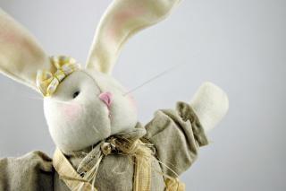 Pasqua coniglio, animale