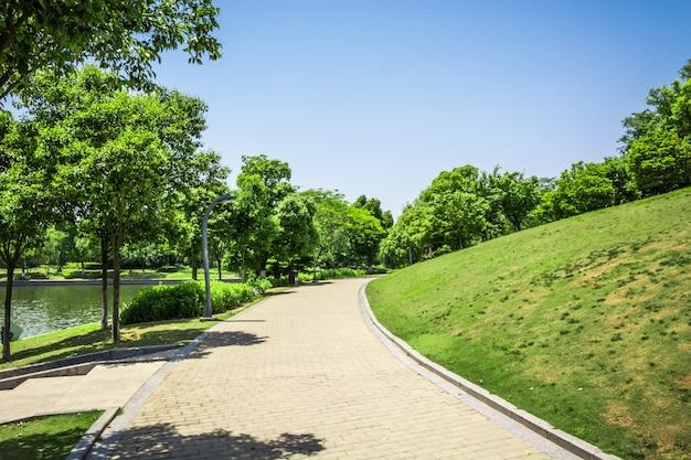 Passeggiata in un bellissimo parco cittadino