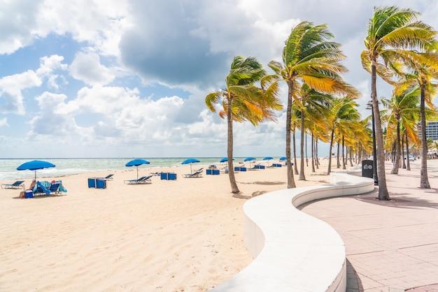 Passeggiata sulla spiaggia di fort lauderdale con palme