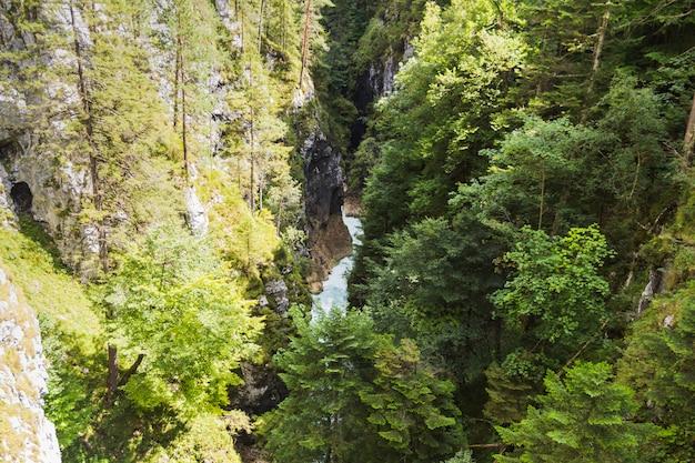 Passerella di gola che attraversa valli verdi sul fiume