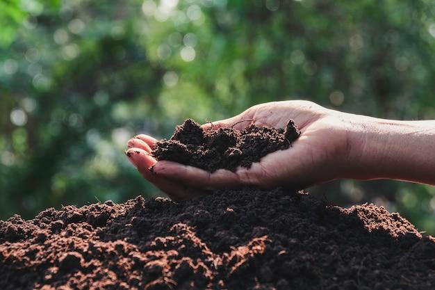 Passi il terreno della tenuta nelle mani per la semina con lo spazio della copia per il testo dell'inserzione.