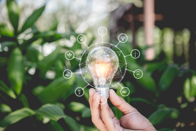 Passi la tenuta della lampadina con le fonti di energia delle icone per energia rinnovabile, naturale e ama il concetto del mondo.
