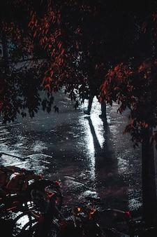 Pavimentazione bagnata di notte dopo la pioggia