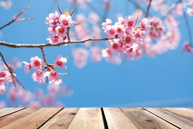 Pavimenti in legno e ha sfondo vedere i fiori di ciliegio.