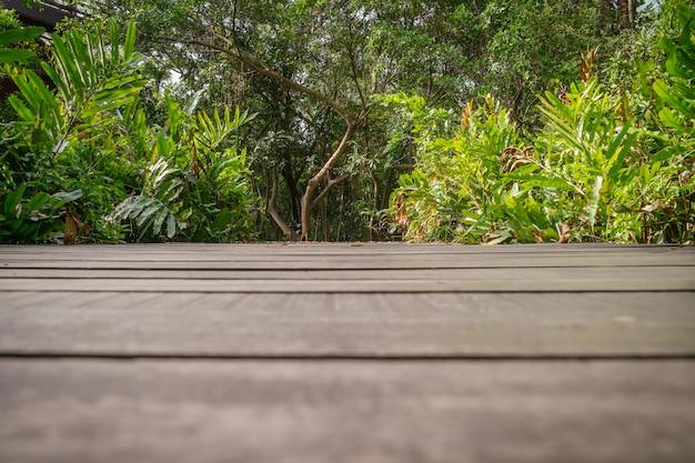 Pavimento in legno scuro con foresta lussureggiante in background.