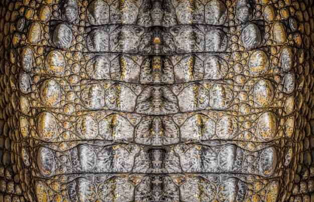 Pelle di coccodrillo, foto del primo piano come fondo