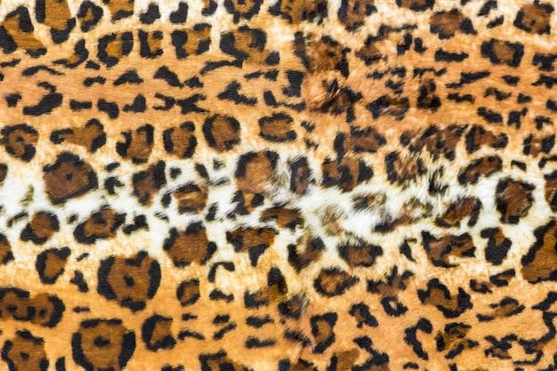 Pelle di leopardo sullo sfondo, stampa animalier