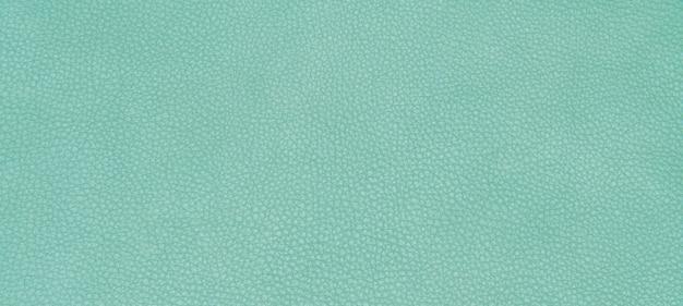 Pelle verde texture
