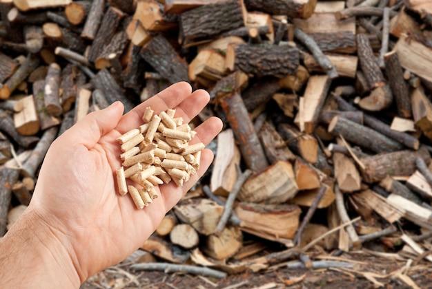 Pellet di legno in mano