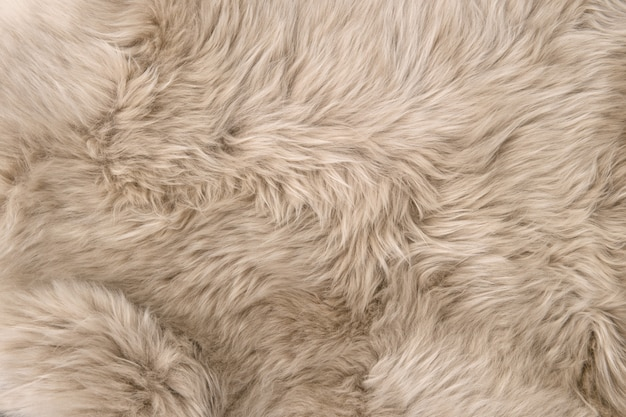 Pelliccia di pecora sfondo di montone naturale trama di lana