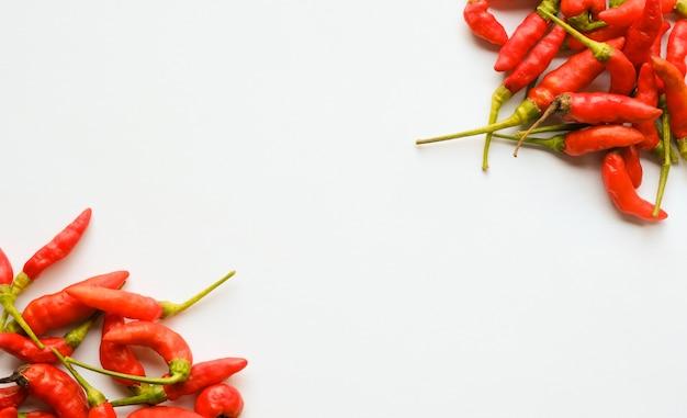 Peperoncini rossi su sfondo bianco con spazio di copia