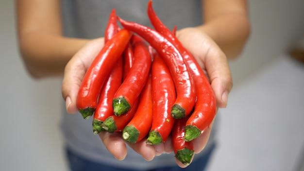 Peperoncino rosso rosso della holding della mano della donna